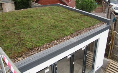 Green Living Roof helps with Planning in Brighton